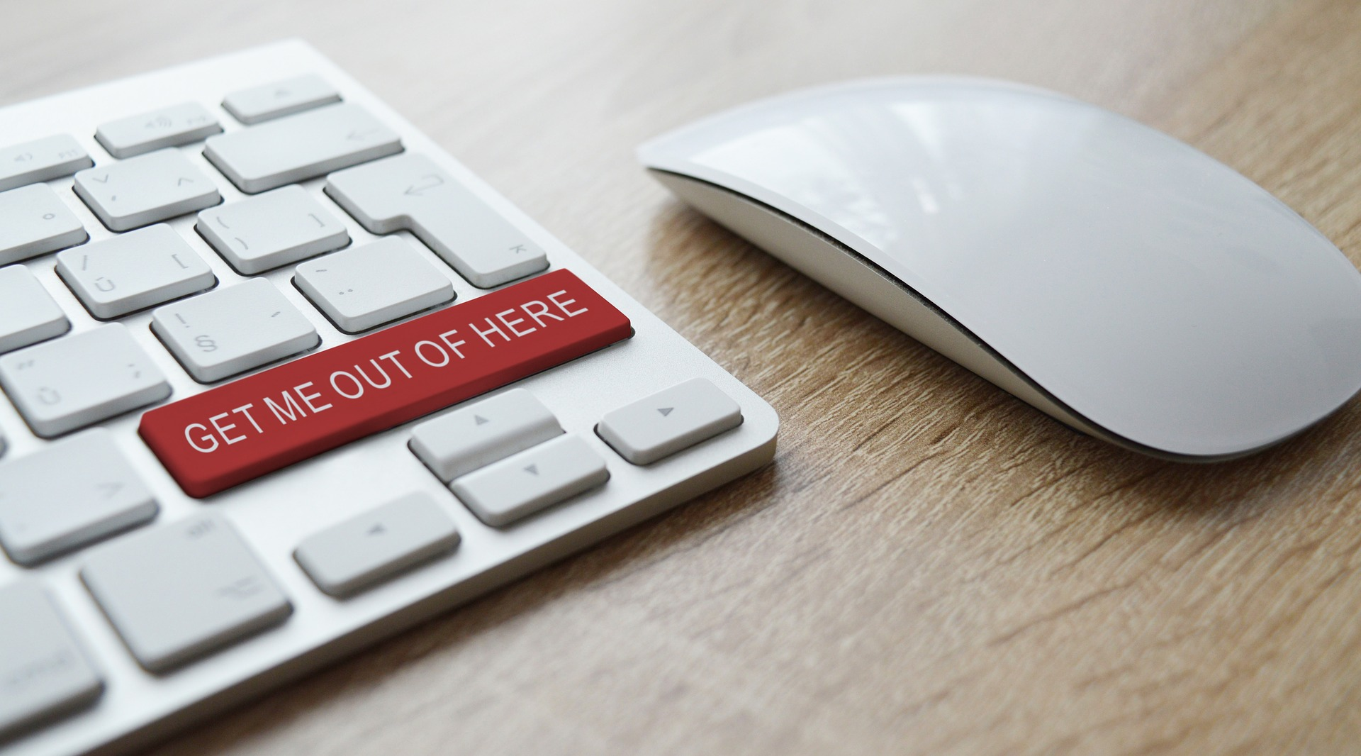 How to Protect Your Business From Scams
